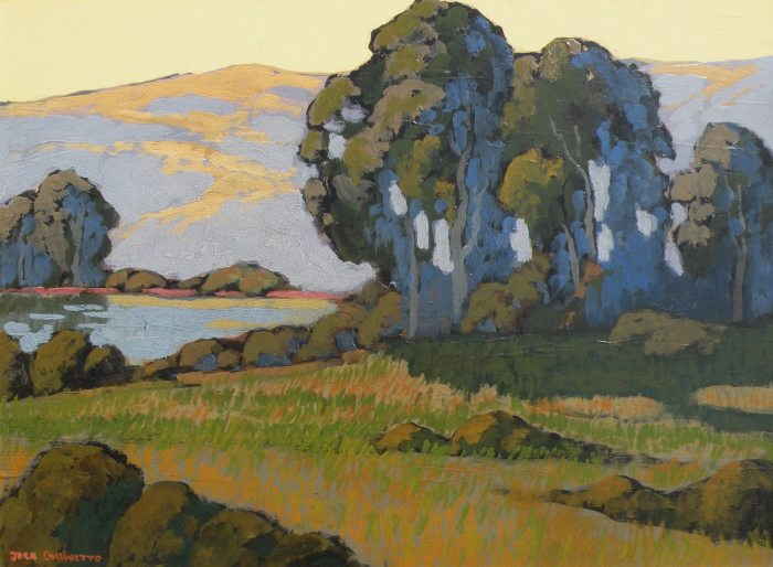 Jack Cassinetto - End Of Nicasio Reservoir