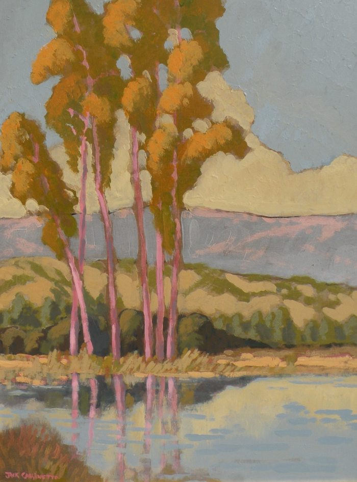 Jack Cassinetto - Young Eucalyptus Reflection