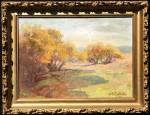 Chittenden Autumn Shadows