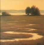 Coy Quiet Evening Marsh