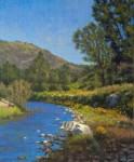 Allen Figone - Creekside Poppies II