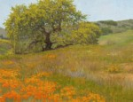 Allen Figone - Oak and Poppies