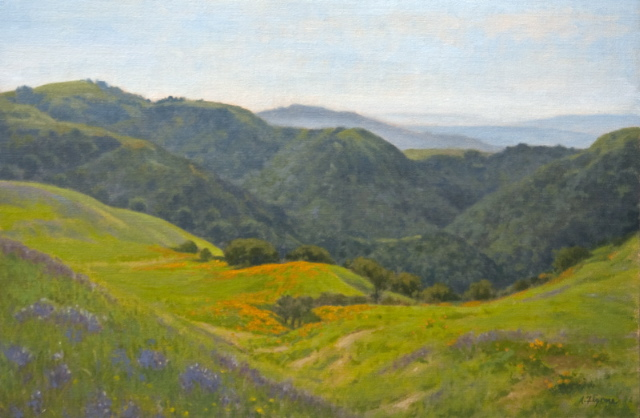Allen Figone - Sierra Road Wildflowers