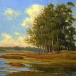 Allen Figone - Wetlands