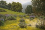 Allen Figone - Wildflowers and Fog