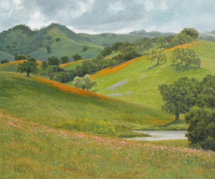 Allen Figone - Yerba Buena Wildflowers