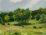 Ronald Goldfinger - Tyringham Field