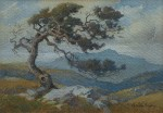Percy Gray - Cloud Swept Tam