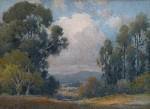 Percy Gray - Eucalyptus Marin