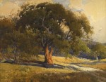 Percy Gray Oak Trees on a Country Road