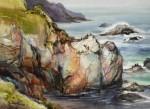 Hofstetter Cormorant Rock