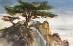 Hofstetter Lone Cypress