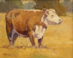 Paul Kratter - Cow Study