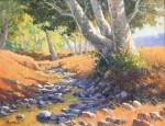 Kratter Creekside Sycamores
