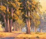 Paul Kratter Eucalyptus Lined Trail