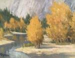 Kratter Yosemite Gold