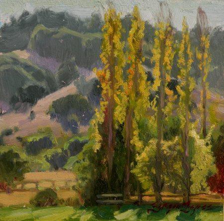 Sergio Lopez Backlit Poplars