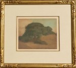 McComas Windswept Oak