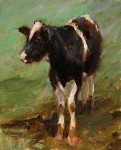 Kyle Paliotto - Coy Cow