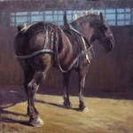 Kyle Paliotto - Dark Horse