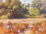 Przewodek Mendocino Hillside