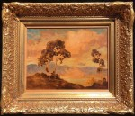 Schwartz Eucalyptus Twilight Monterey