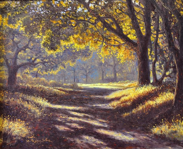 Dave Sellers - A Cool Walk In Warm Light