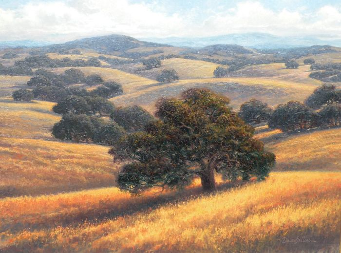 Dave Sellers - Afternoon Gold Summer Oaks