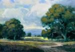 Sellers Goldfield Spring