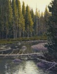 Dave Sellers - Lyell Fork Tuolumne River