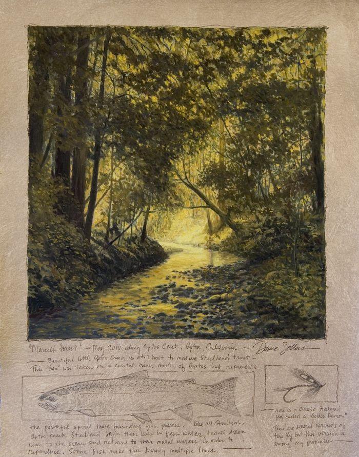 Dave Sellers - Marcels Forest