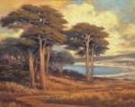 Sellers Monterey Bay Cypress