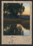 Dave Sellers - Napa River Blue Heron