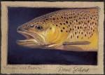 Sellers Spring Creek Brown