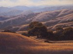 Dave Sellers - Summer Hills Sonoma