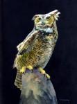 Morten Solberg Night Hunter Great Horned Owl