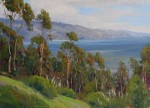 Bart Walker - Bolinas Overlook