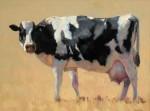 Bart Walker - Holy Cow