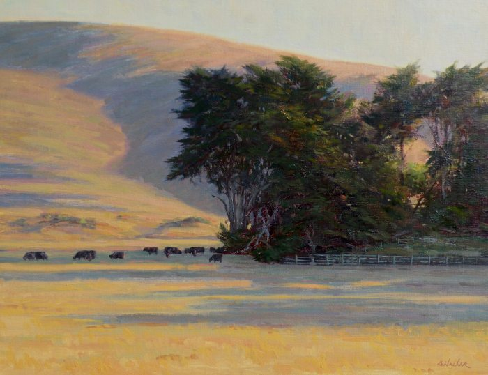 Bart Walker Morning Shadows Sonoma Coast