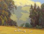 Bart Walker - Sonoma county