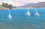 Walker Tomales Bay Fleet