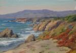 Walker Vibrant Coast