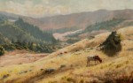 Welch, Ludmilla Summer Hills