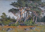 Gunnar Widforss - Sun Washed Trees
