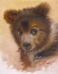 F. Michael Wood - Cub Scout