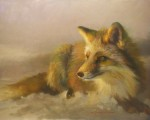 F. Michael Wood - Dawn Red Fox