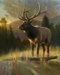 Wood High Meadow Sunrise Bull Elk