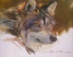 F. Michael Wood - Sixth Sense wolf