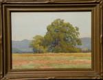 Lorenzo P. Latimer - Hopkins Field