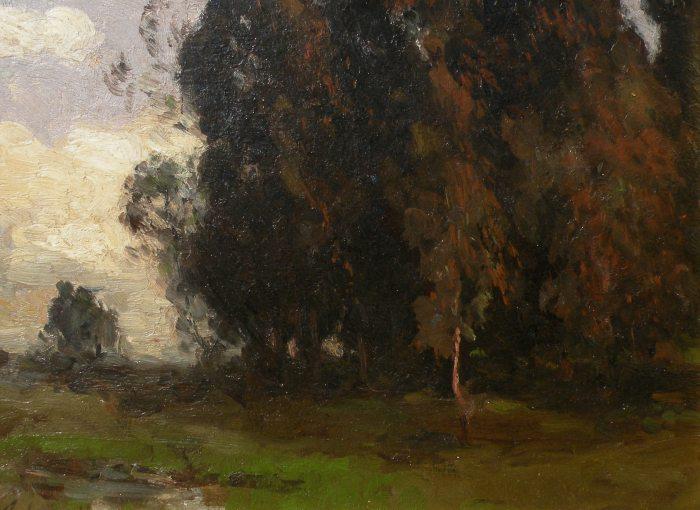 Giuseppe Cadenasso - Eucalyptus